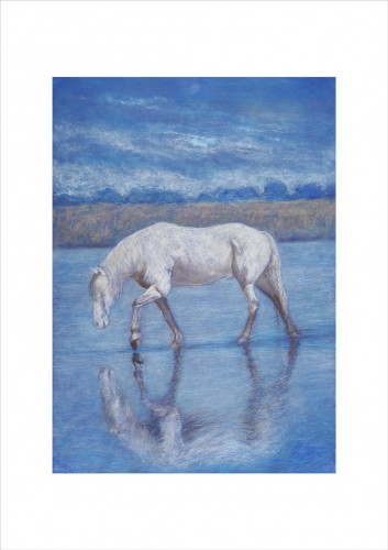 Horse on Watering Place  I